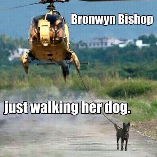 Bronwyn Bishop meme