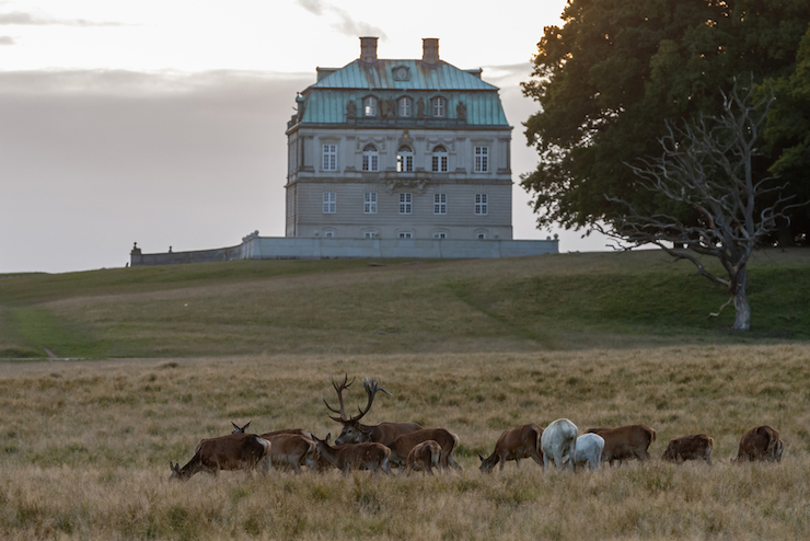 A hunting house in the hunting house at Jaegersborg Dyrehaven forest park is just a sample of the historical beauty that's on offer in Denmark. Photo: Shutterstock
