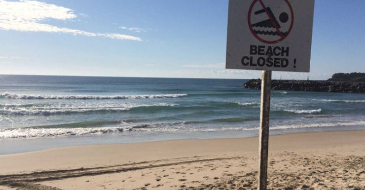 Main Beach at Evans Head has been closed due to the shark attack.