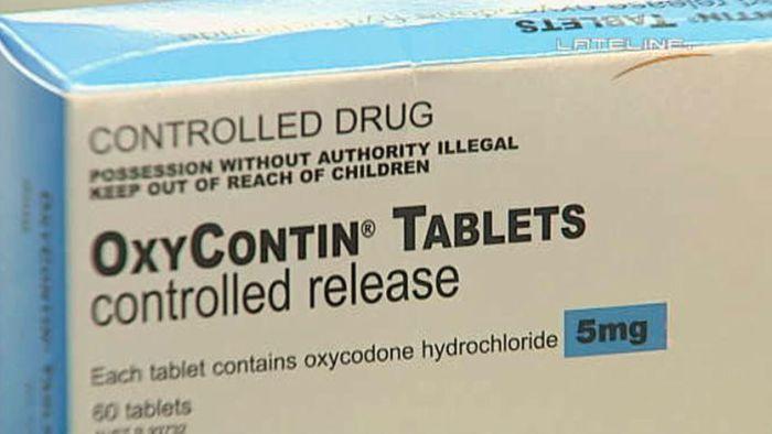 oxycontin guilty plea