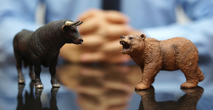 Bull and bear shares