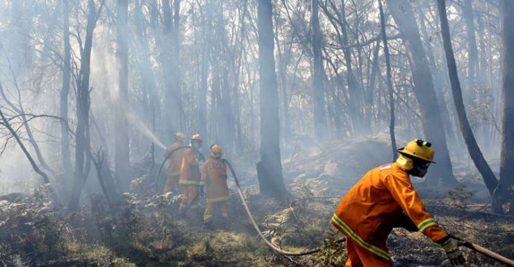 Firefighters taking on Lancefield blaze near Benloch.