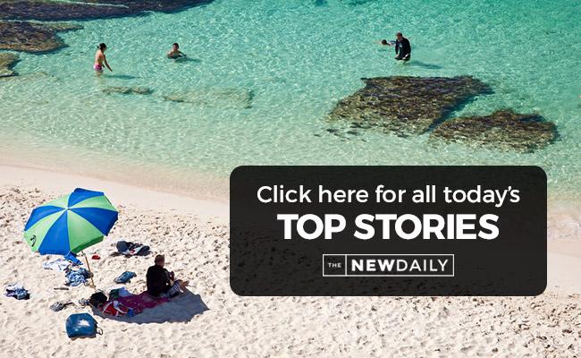 fremantle-top-stories