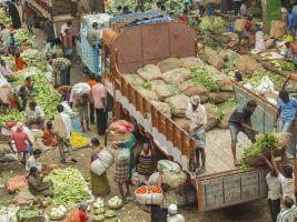 India food market