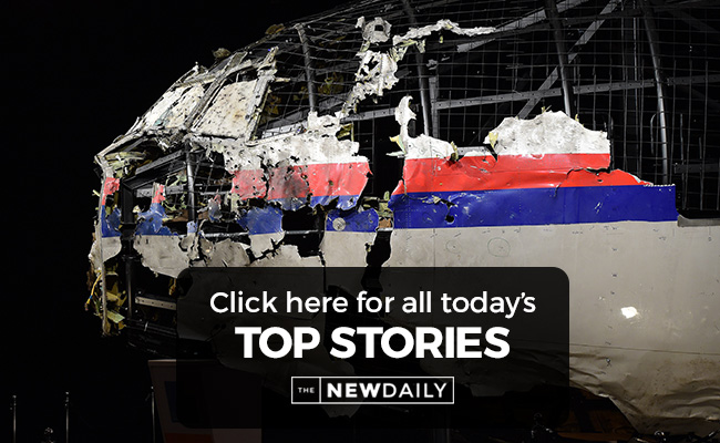 mh17-top-stories