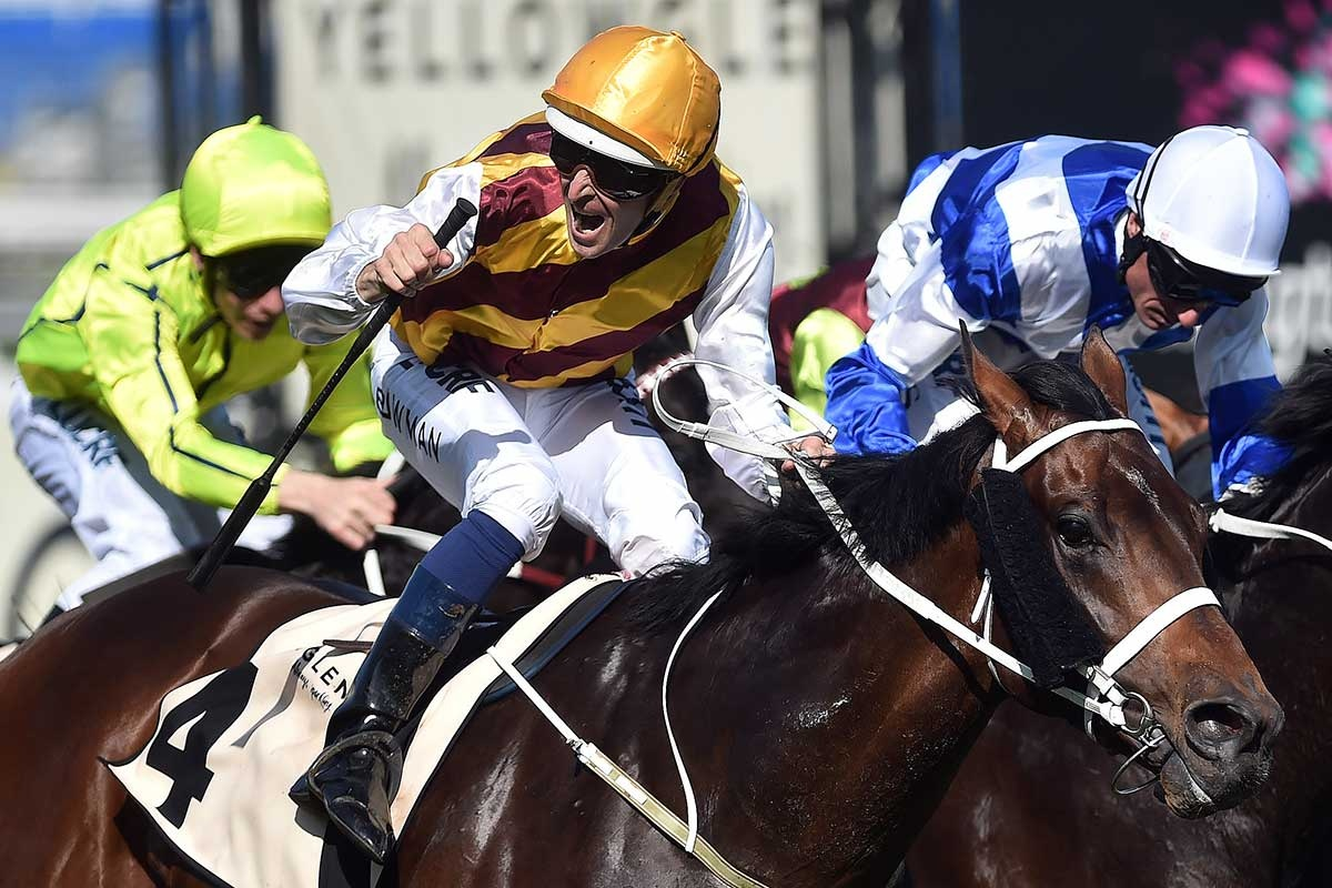 Can Turnbull Stakes winner Preferment give Chris Waller a Melbourne Cup? Photo: AAP