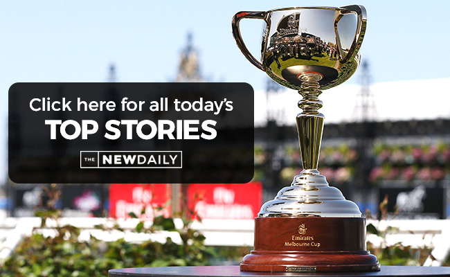 melbourne-cup-top-stories