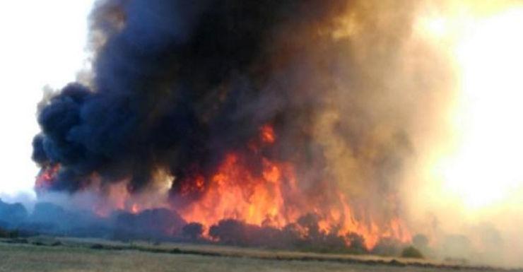 bushfires wa