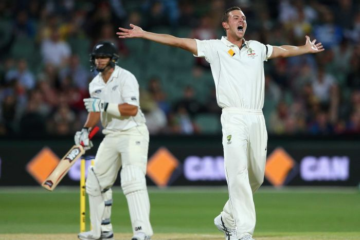 Josh Hazelwood was named the emerging cricketer of the year. Photo: ABC