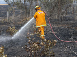 Firefighters at a fast moving grass fire in the Epping area.