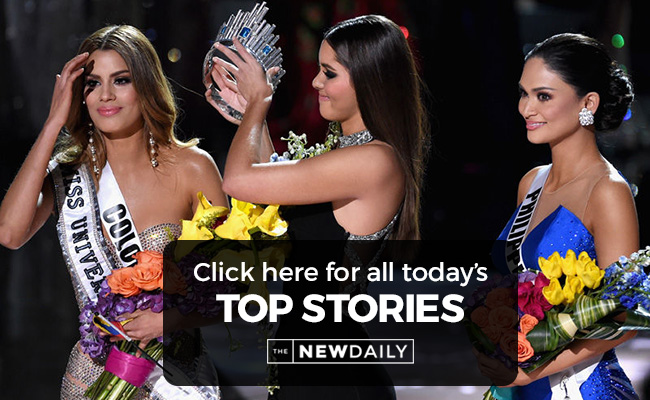 missuniverse-top-stories