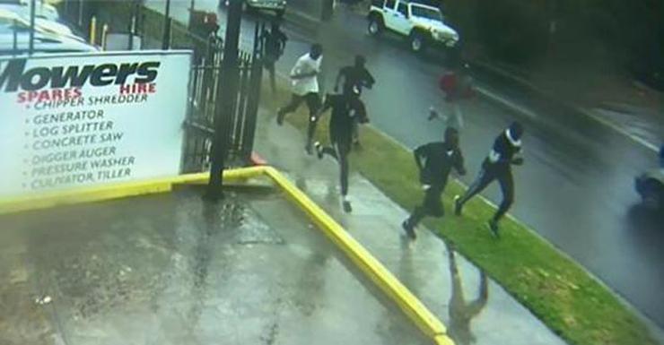 brawl suspects