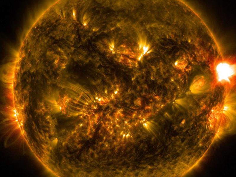 Solar Flare on the Sun NASA SDO. NASA