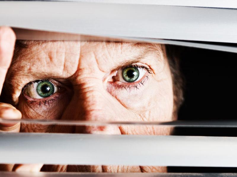 spying neighbour