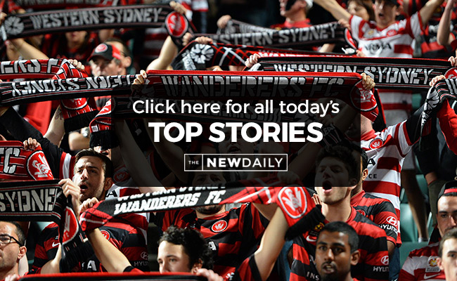 wanderers-top-stories