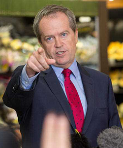 Bill Shorten: coming to you live from your local supermarket. Photo: AAP