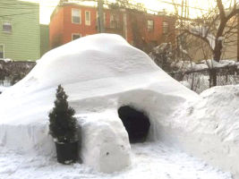 new york igloo