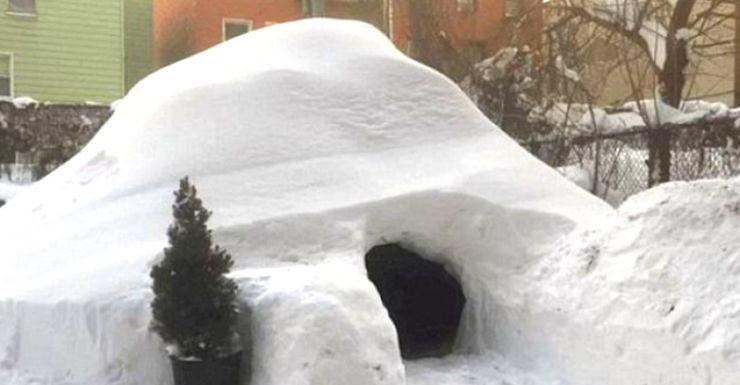 new york igloo