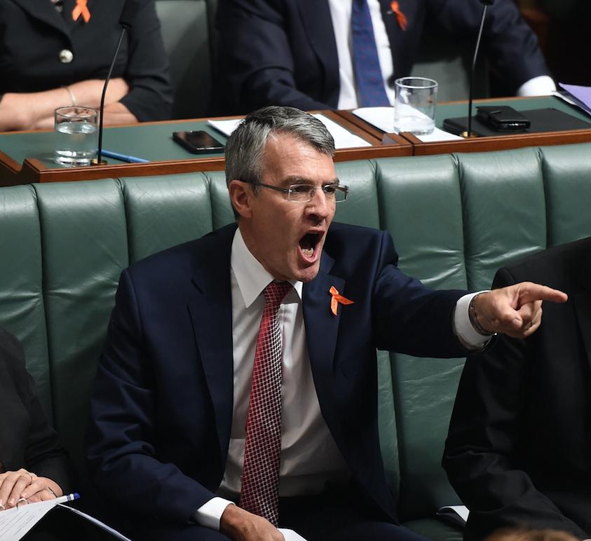 Mr Dreyfus was scathing of the measures taken by Mr Brandis. Photo: AAP