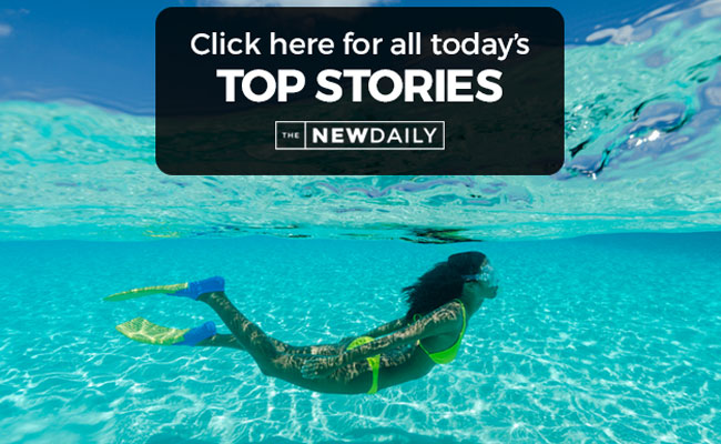 top-stories-swimming