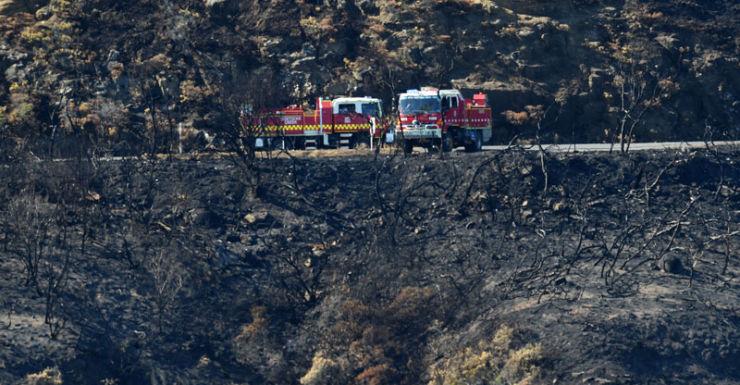 victorian bushfire