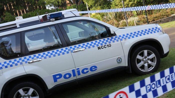 Alleged burglar bashed