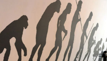 The new discovery could rewrite the story of human origins. Photo: ABC