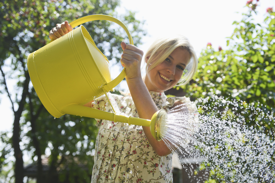 The secret tricks every gardener should know the new daily for Gardening 101 australia