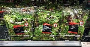 lettuce-edm
