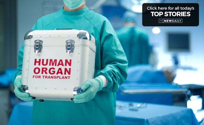 top-stories-organs