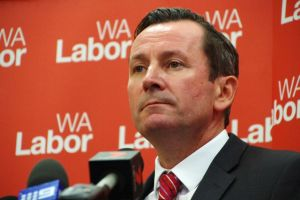 "The WA Liberals say Facebook users should report any ""untrue"" posts from Labor opposition leader Mark McGowan."