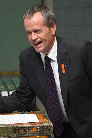 Bill Shorten says his party won't block the supply bill. Photo: AAP