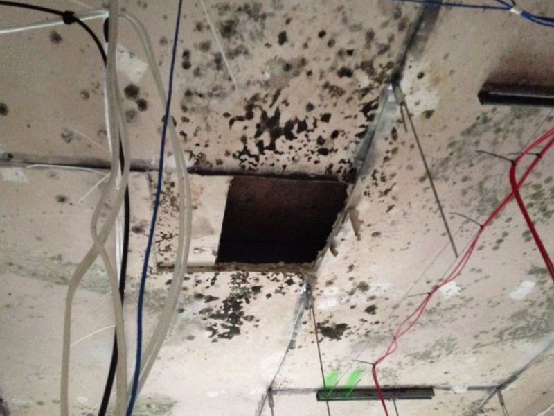 Mould has been found in many of the Royal Hobart Hospital demountables.