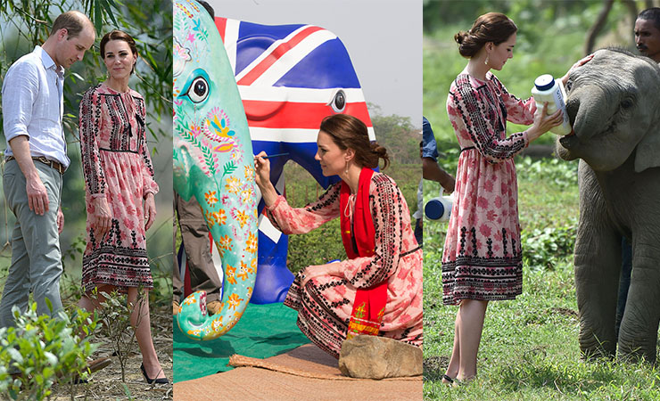 kate middleton india elephant