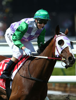 Payne rode Prince of Penzance to the 2015 Melbourne Cup. Photo: Getty