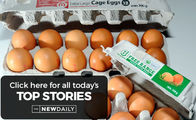 top-stories-eggs
