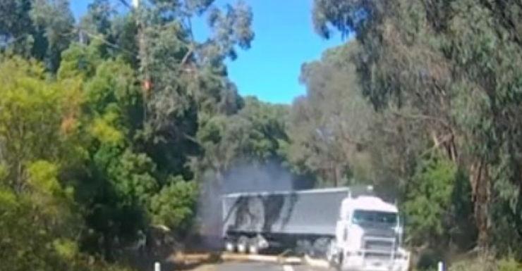 A semi-trailer hits a tree branch.