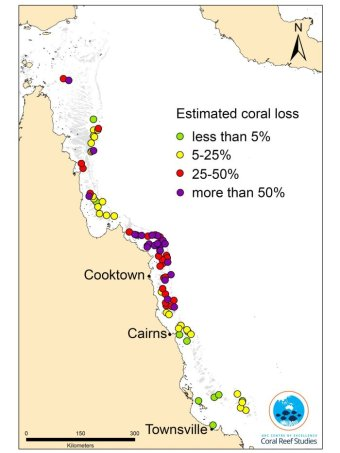 A map of mortality estimates on coral reefs along 1,100 kilometres of the Great Barrier Reef.