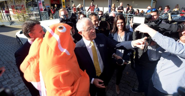 turnbull nemo