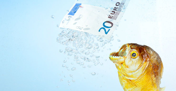 brexit piranha