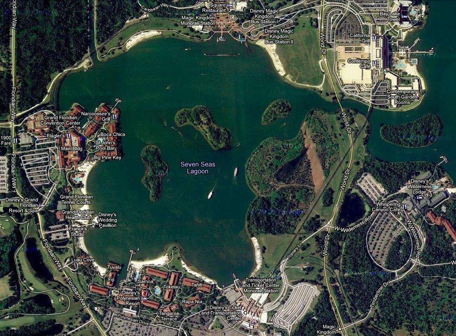 seven seas lagoon alligator