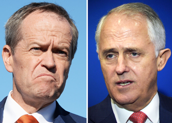bill shorten malcolm turnbull