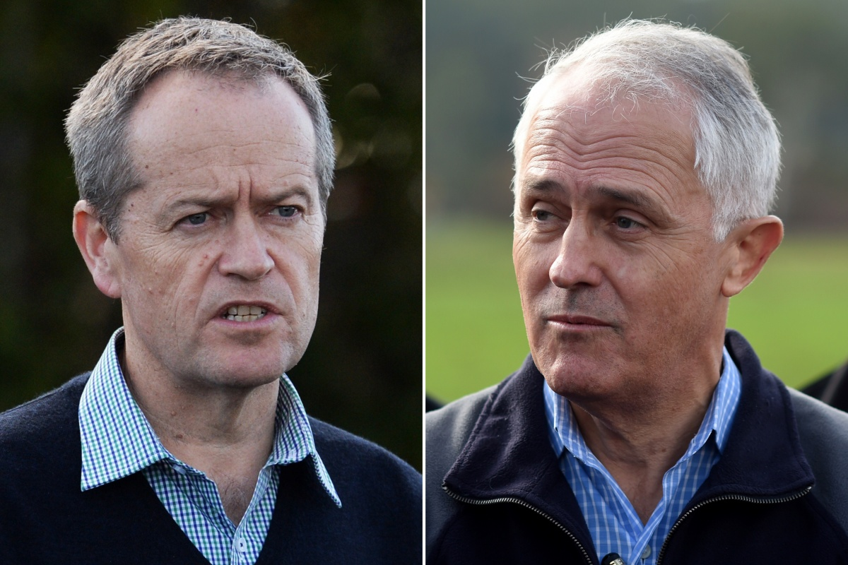 Bill Shorten and Malcolm Turnbull