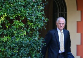 Mr Turnbull needs to win at least two more seats to form government.
