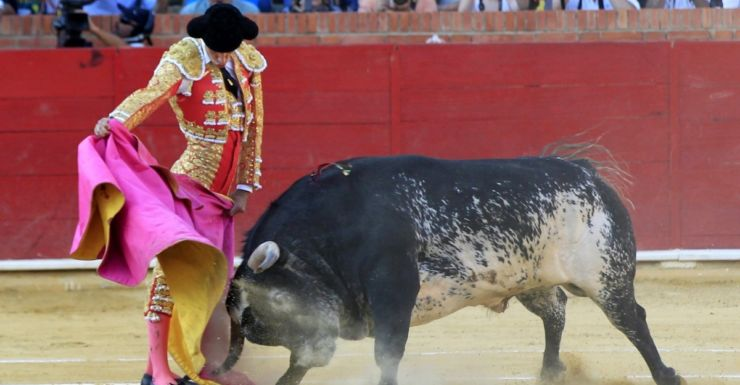 Top Bullfighter Barrio Gored To Death By Bull