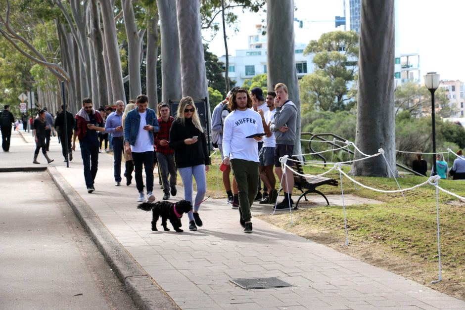 Pokemon Go players at Kings Park in Perth. Photo: ABC