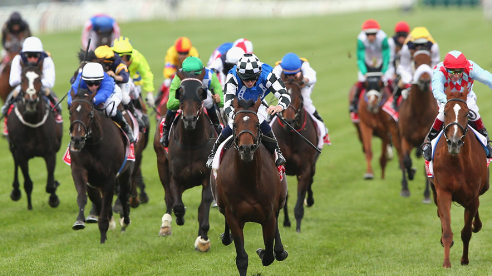 horse racing welfare