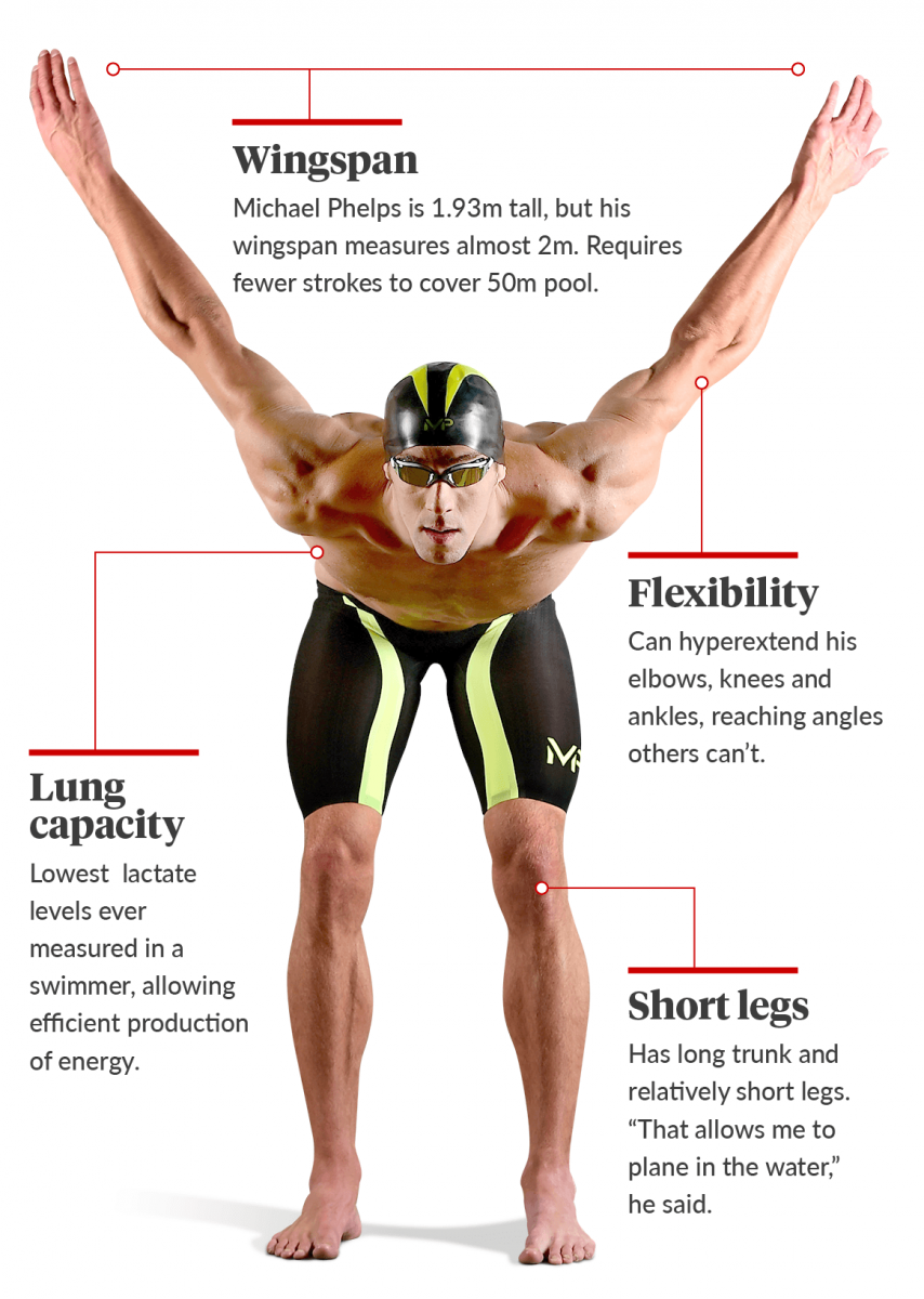 Rio Olympics 2016 The 10 Incredible Facts Of Michael Phelps