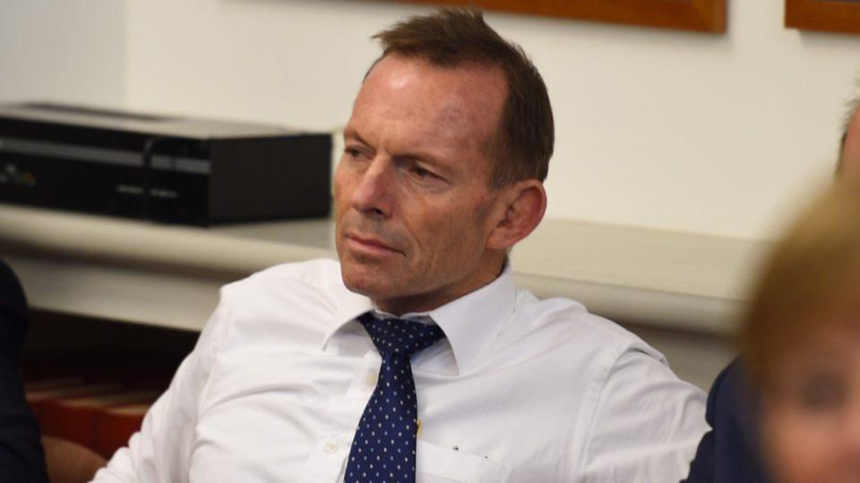 Tony Abbott making life hard for Turnbull