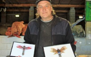 Steve Wakeling with mounted recycled bugs